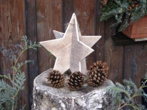 Weihnachtsmotive (3)